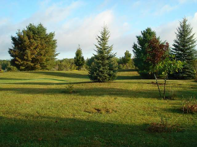 363 LINKSVIEW WAY, Gladwin, MI