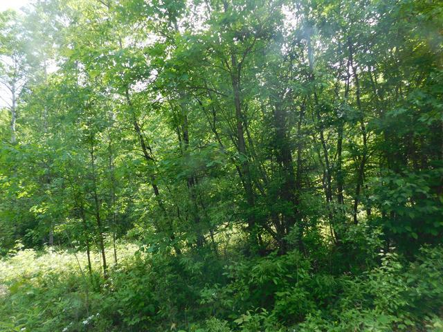 Lot 17 GREENLEAF DRIVE, Houghton Lake, MI