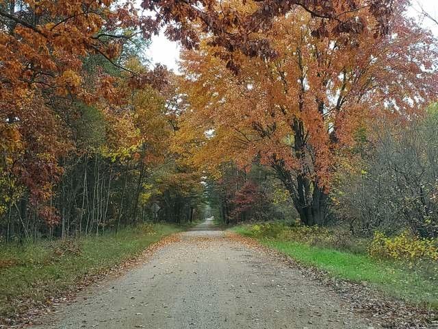 240 acres RIDGE, Gladwin, MI