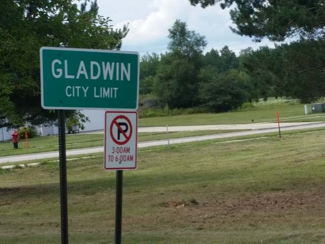 LOT 2 PHEASANT RUN, Gladwin (city), MI