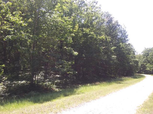 ON FOREST, Gladwin, MI