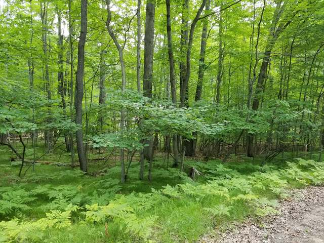 Lot 402 FAWN TERRACE, Farwell, MI