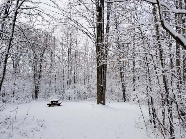 Lot 1222 PLUM TERRACE, Farwell, MI