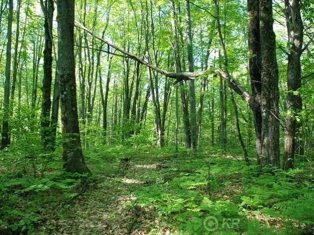Lot #1 EAST PINECREST DRIVE, Gladwin, MI