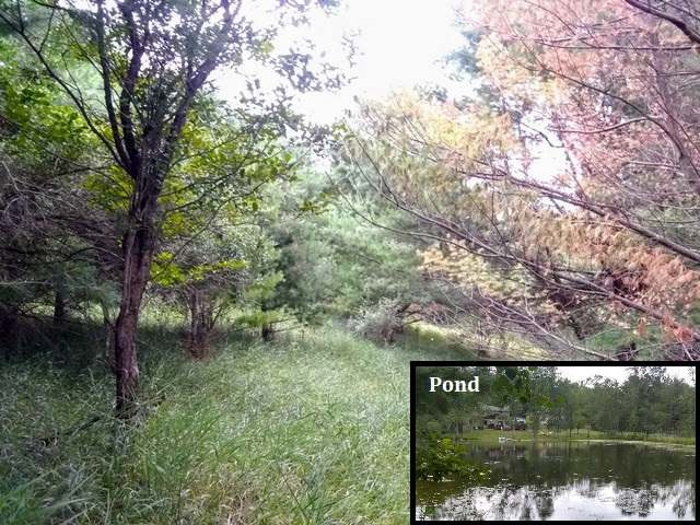Lot 19 QUEENS WAY, Gladwin, MI