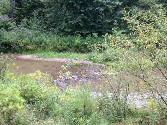 H SUGAR RIVER TRAIL, Gladwin, MI
