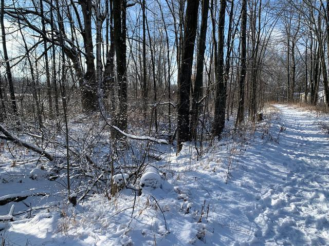 Lot 20 SAGINAW, Beaverton (city), MI